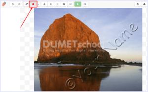Cara Mudah Menghilangkan Watermark Pada Foto